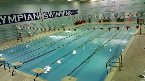 Learn How To Swim Toronto Competitive Swimming Toronto Swimming Lessons Adult Swimming